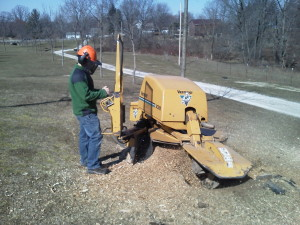 stump grinding in cleveland